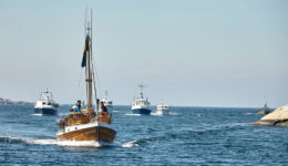Kastor flotta