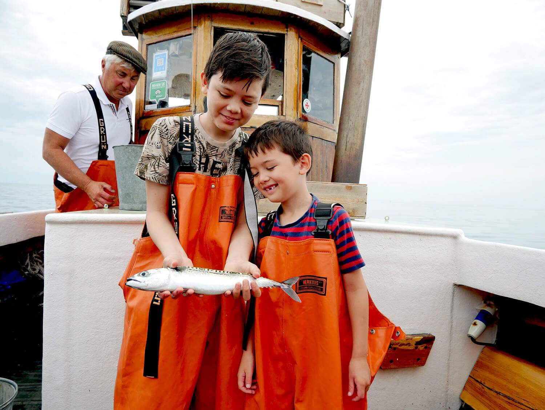 Fiska markill